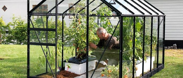 Drivhus Test – Find dit næste drivhus her