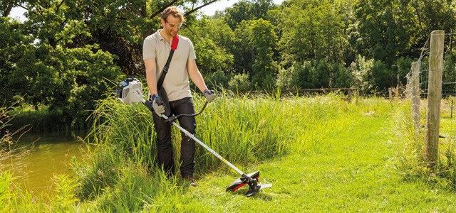 Buskrydder test – Hvilken passer bedst til dig og din have?