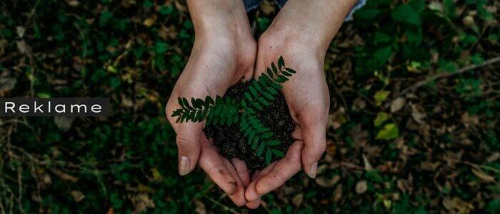 Tips til en mere bæredygtig hverdag